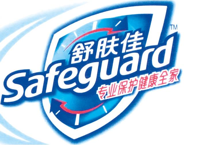 safeguard%20with%20Chinese.tif