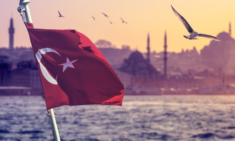 Turkey trademark uplift, INPI announces Africa IP adviser, and China counterfeit crackdown: news digest