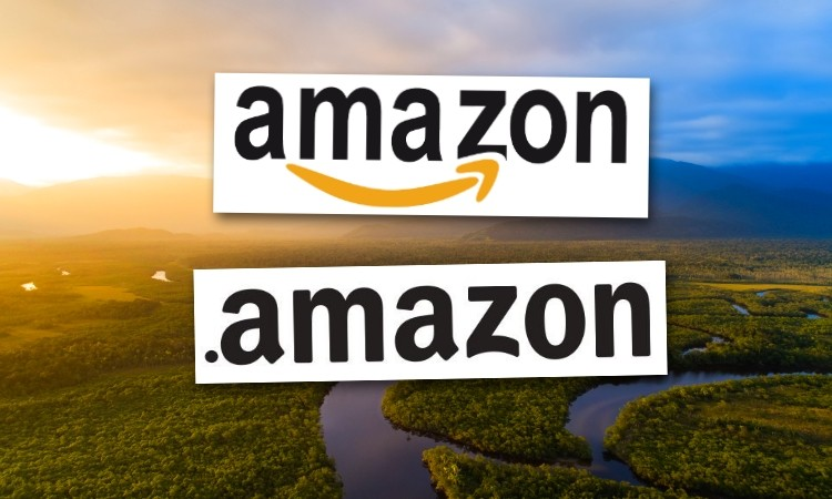 ICANN pushes back on government pressure, prepares to publish '.amazon' PICs