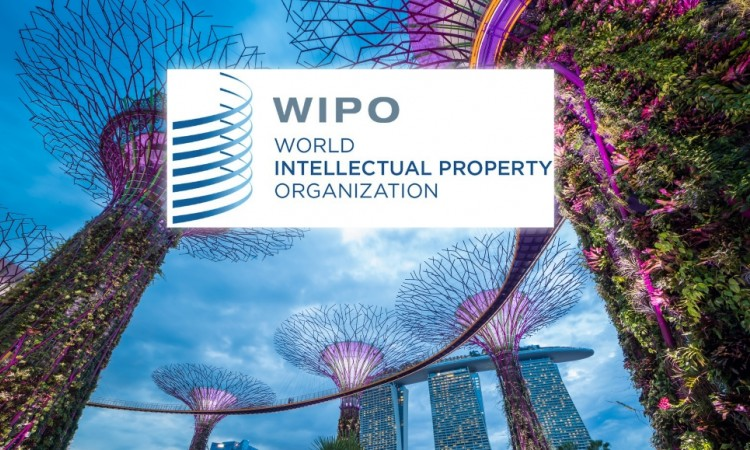 Singapore IP Office chief executive confirmed as candidate as WIPO leadership race prepares for take-off