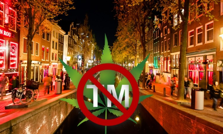 """Europe is not yet prepared"" – reaction as Cannabis mark ruled unregistrable by EU court"