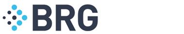 Berkeley Research Group LLC